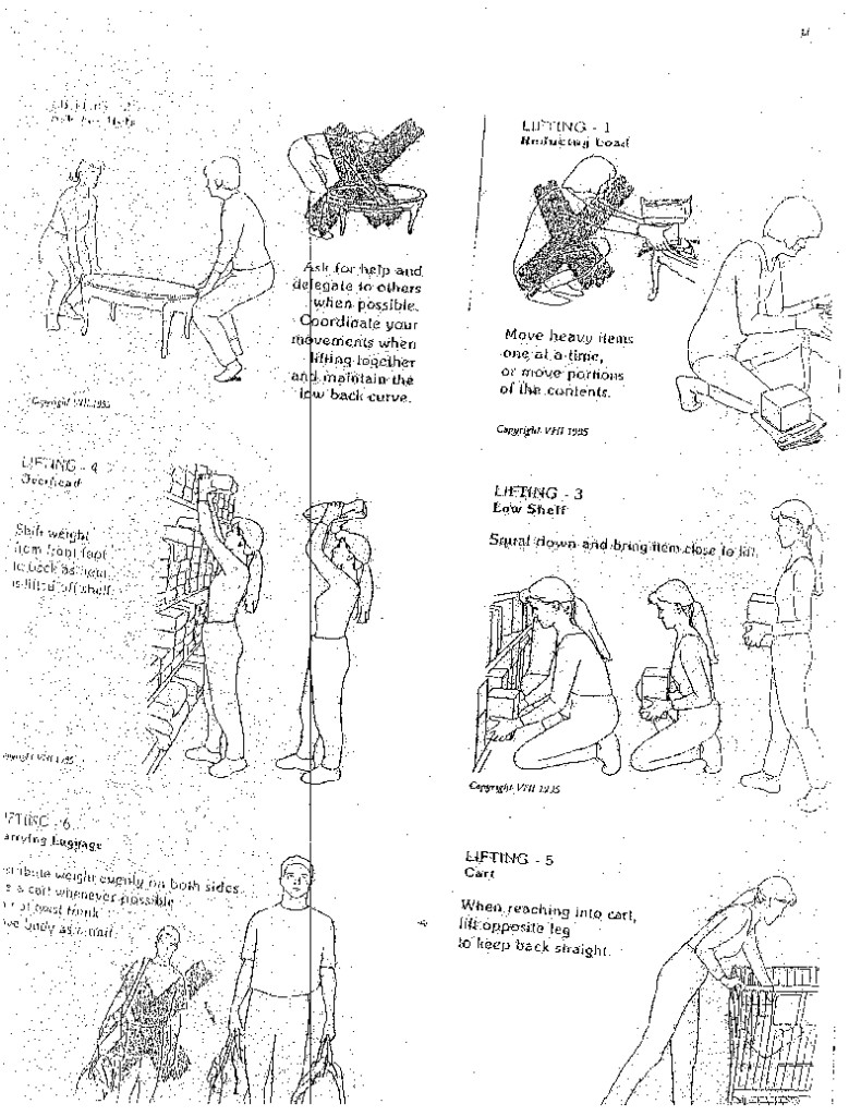 Muldowney Physical Therapy Proper Body Mechanics